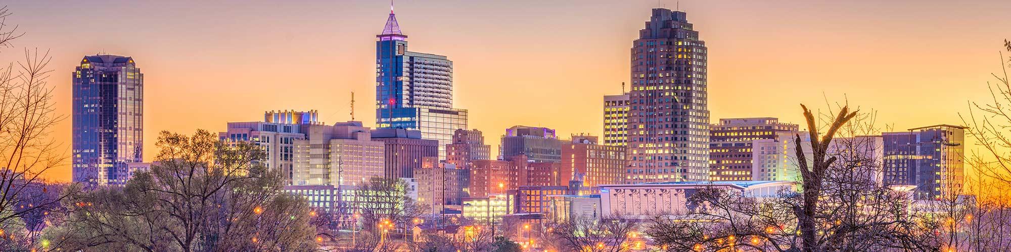 Raleigh Skyline Header Image